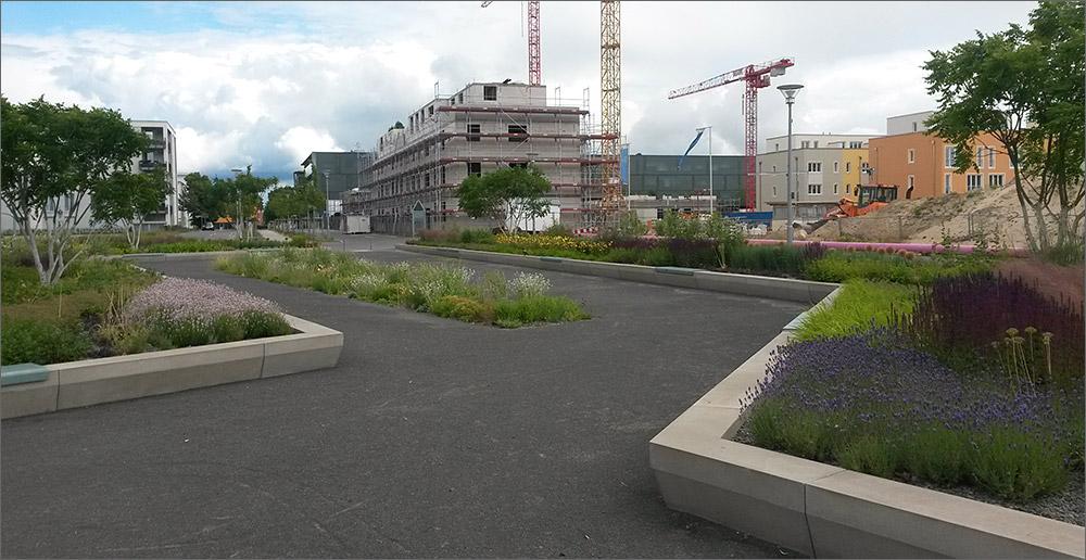 Blumen Adlershof