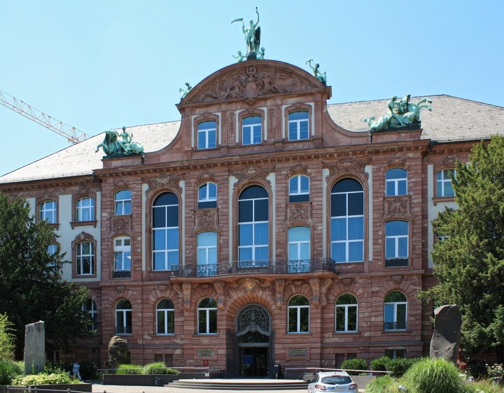 3106senckenbergmuseum.jpg