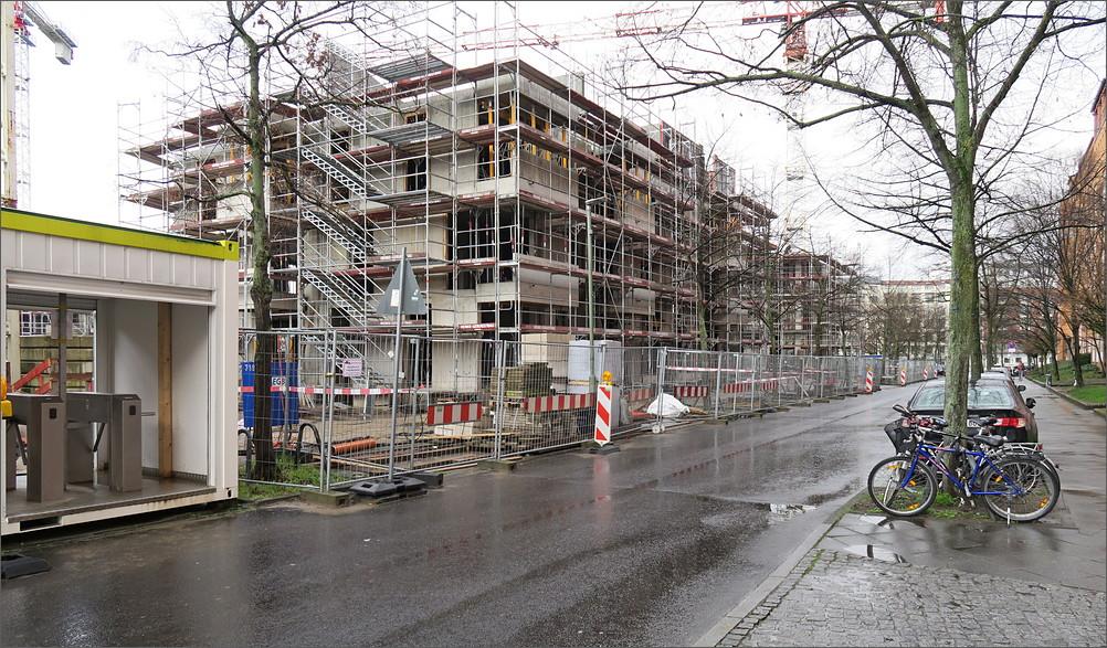 charlottenbogen07.jpg