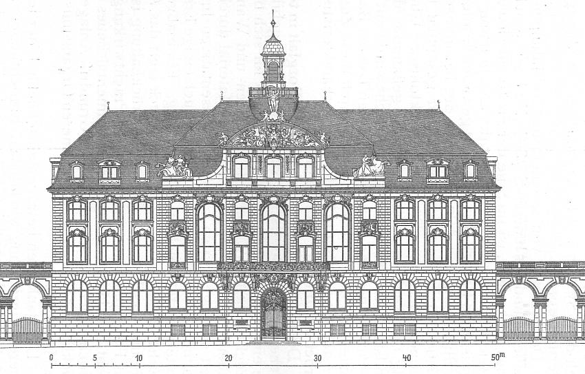 senckenberg-museum.jpg
